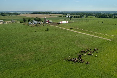 Aerial shot of grazing operation