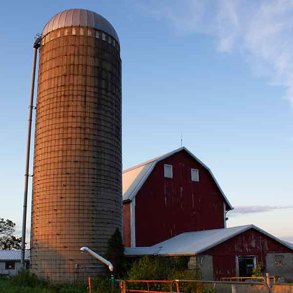 A barn and silo with blue sky behind them