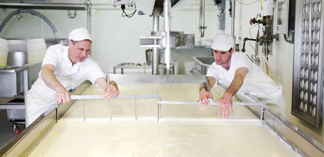 Two men making cheese. Photo credit Uplands Cheese