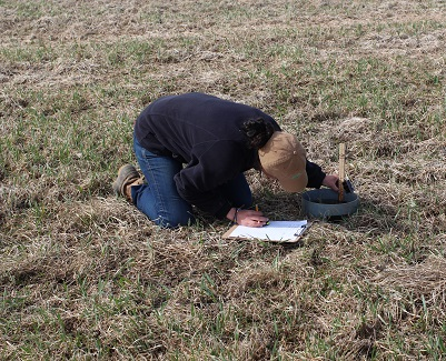 Abby doing soil health measurements in the field